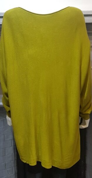 Diverse – Ffion 'A' Line Tunic – Olive Green